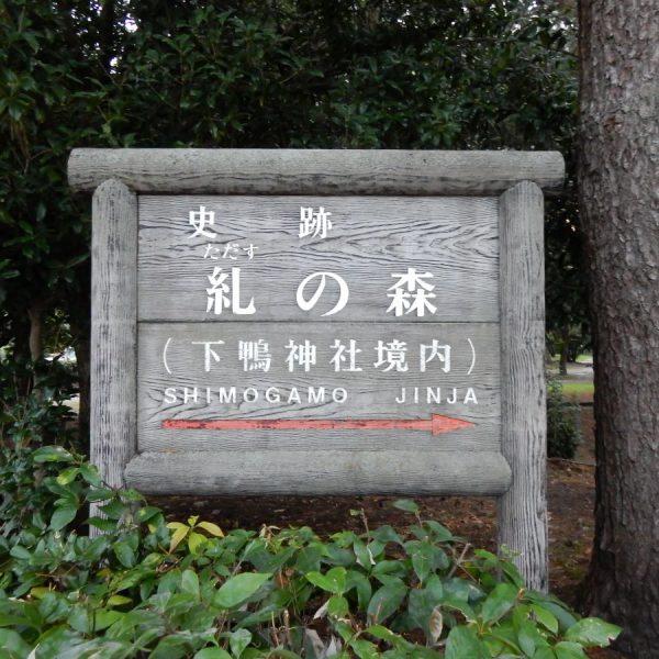 チームラボ下鴨神社糺の森の光の祭(京都 世界遺産)